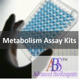 Alcohol/Ethanol Detection Kit - 100 tests ABSbio K105-100