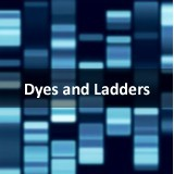 1Kb DNA Ladder